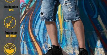 Hiboy Skateboard Planche à roulettes électrique Portable - Moteur 2x350W - Modèle S22